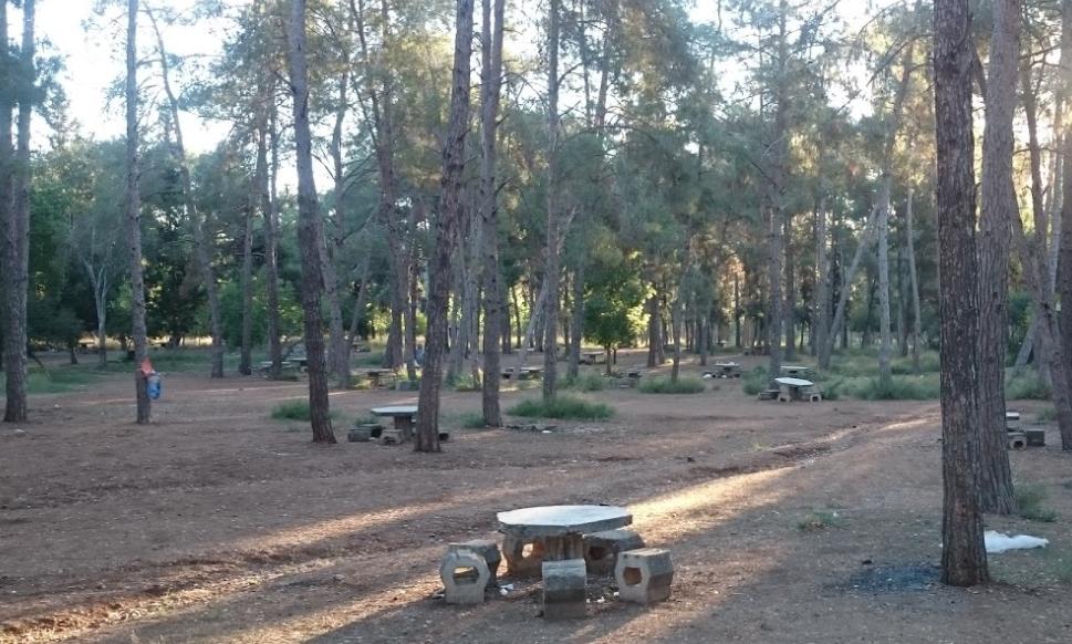 Annerehberi - Dsi - Çamlık Pİknik Alanı